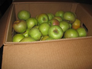 A box of Albermarle Pippins.