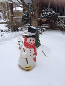 Mr. Frosty snowman